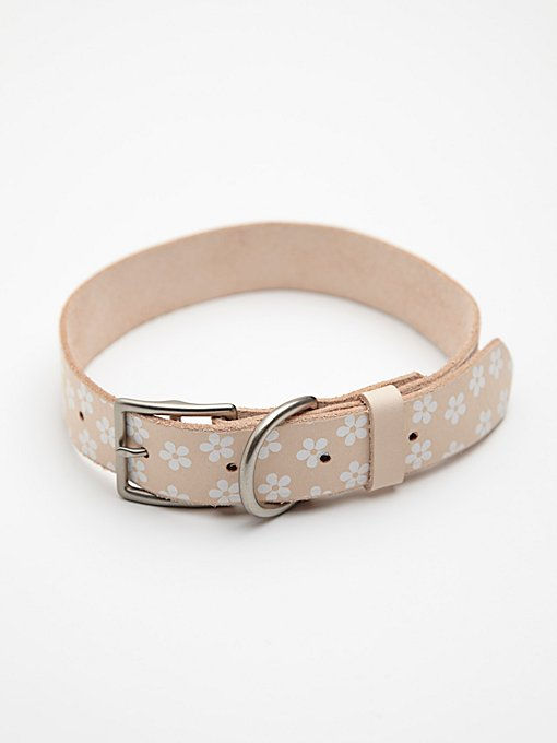 Daisy Paint Leather Collar