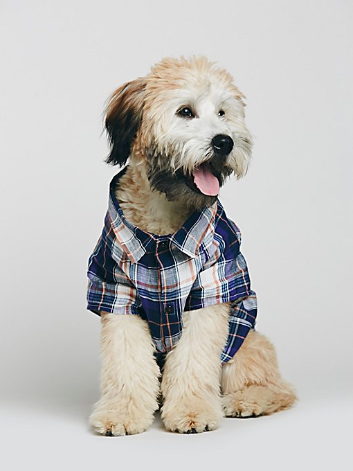 Lucky Pup Button Shirt