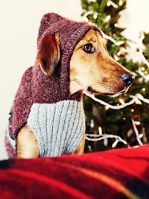Cozy Sweater Dog Hoodie