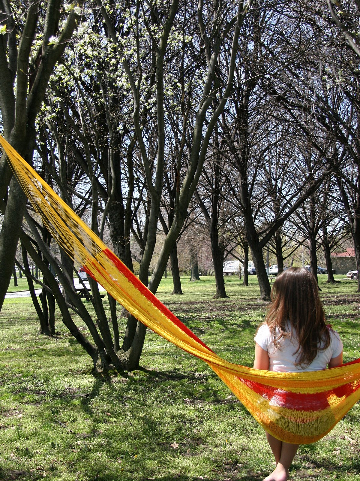 Cotton Mayan Hammock
