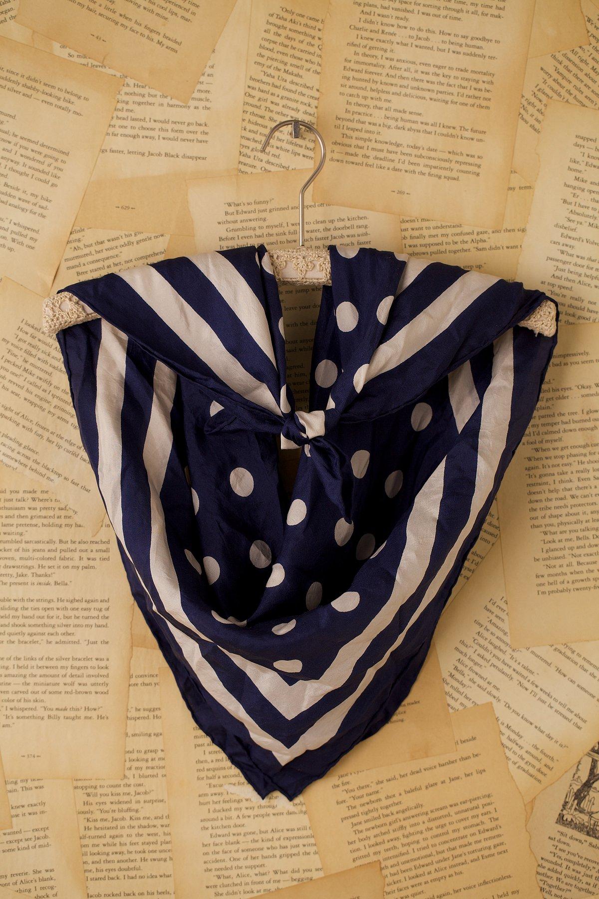 Vintage Blue and Tan Polka Dot Stripe Scarf