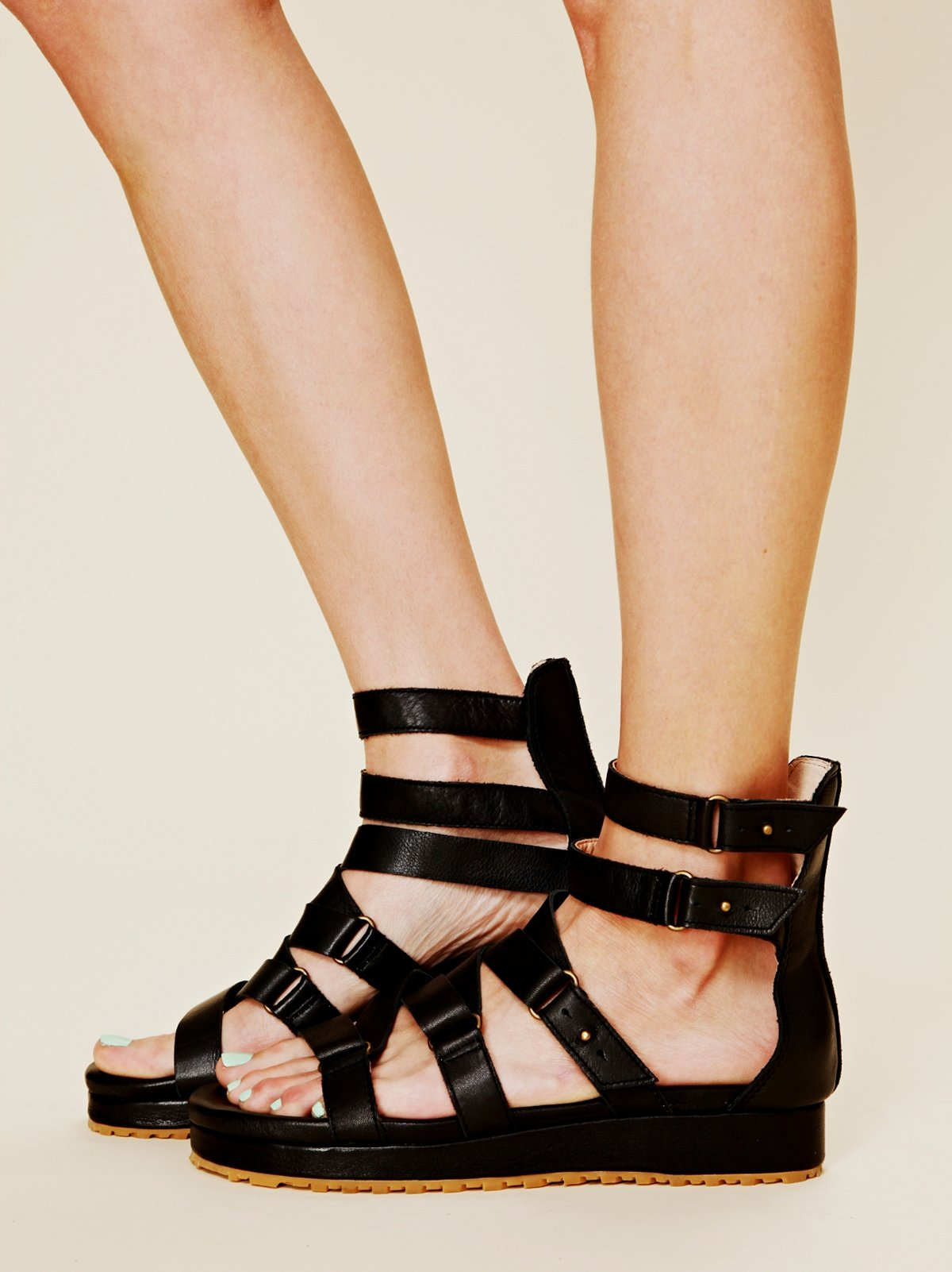 Burnished Gladiator