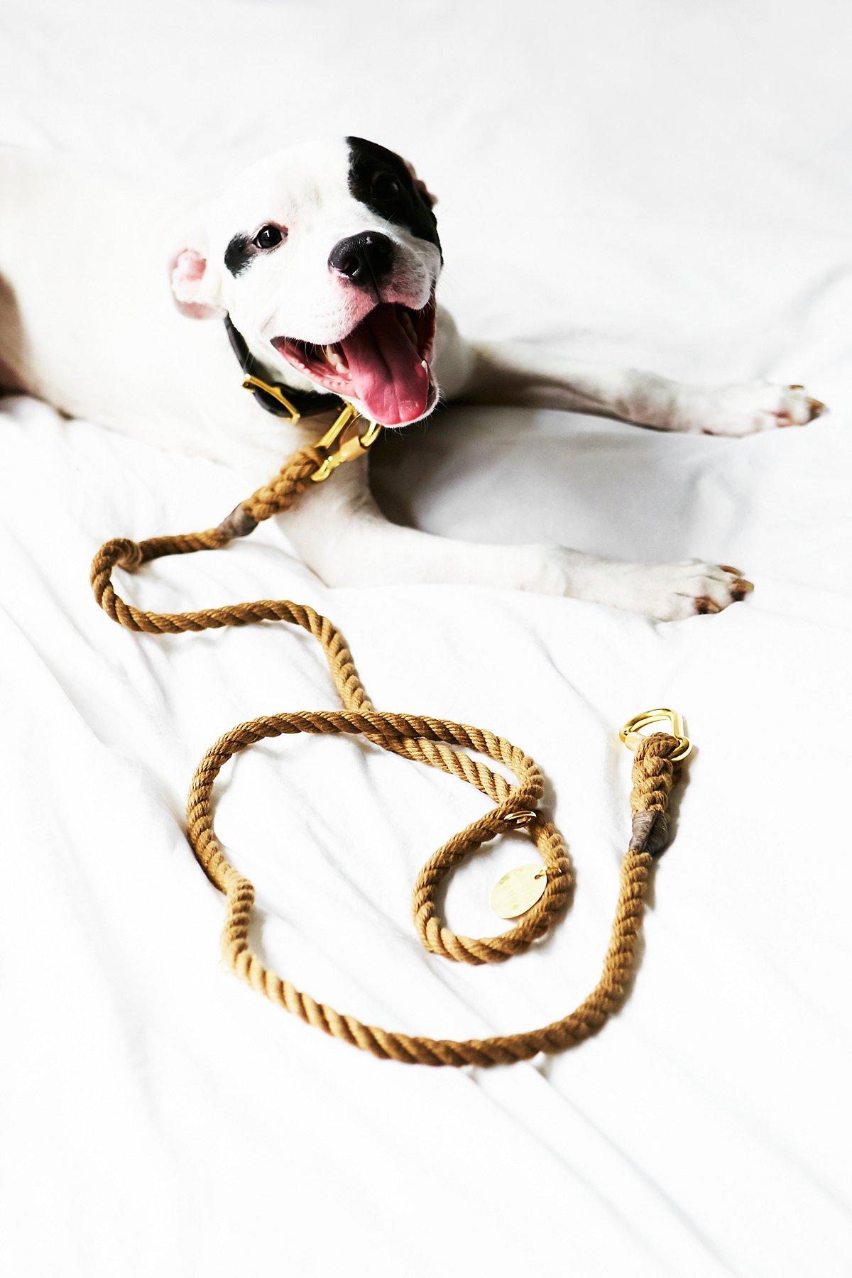 自然色牵狗链绳