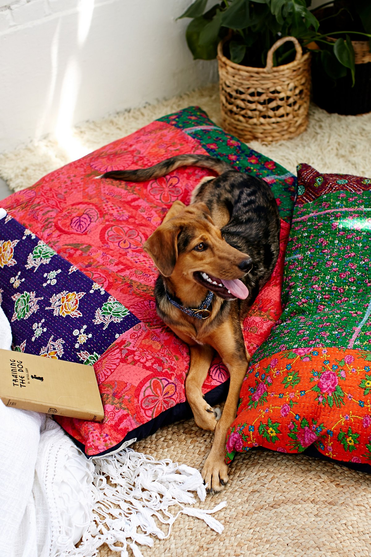 FP One Quilted Dog Bed