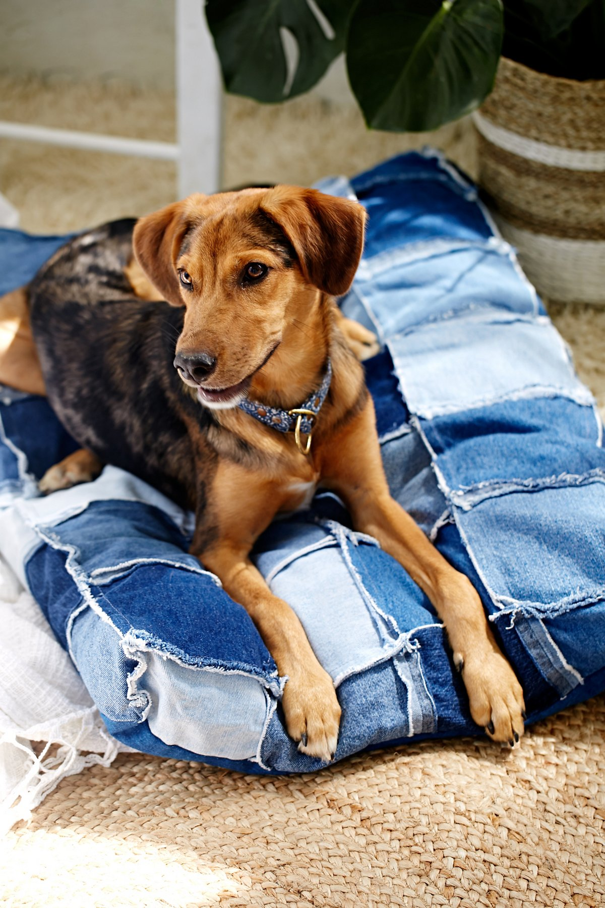 Patched Denim Dog Bed