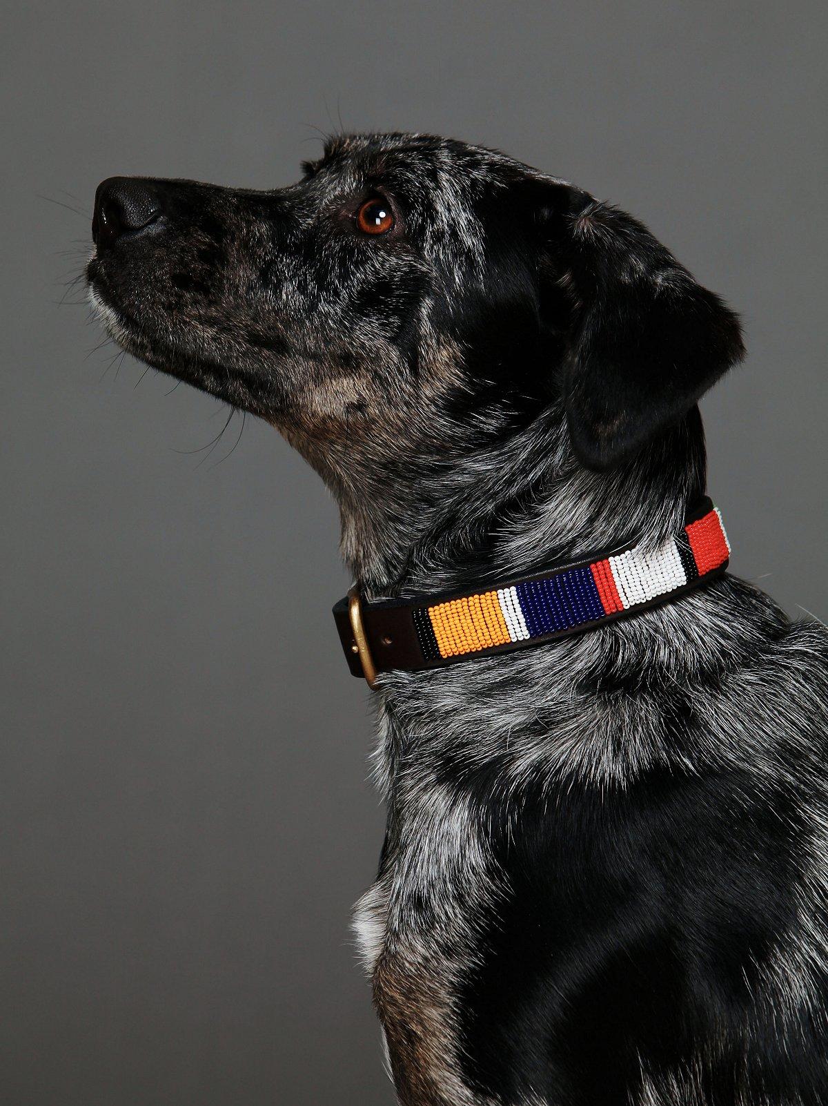 Jibu Beaded Collar