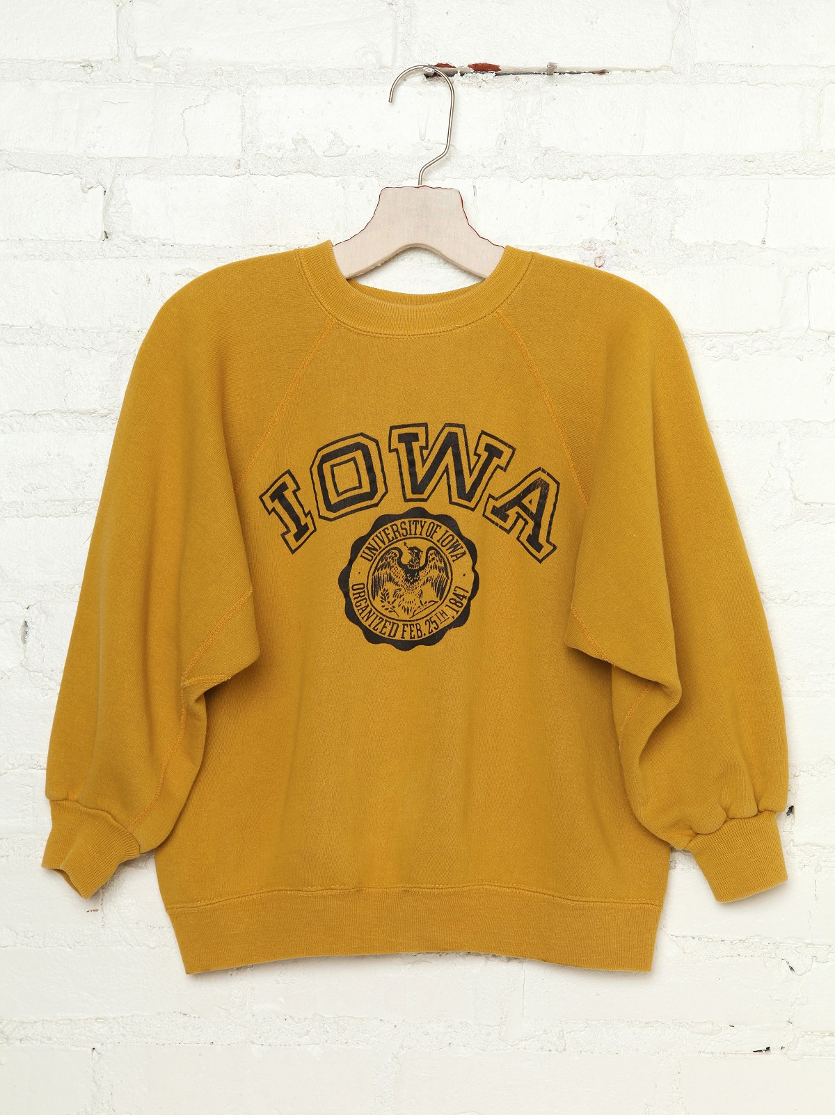 Vintage 1960s Iowa Sweatshirt