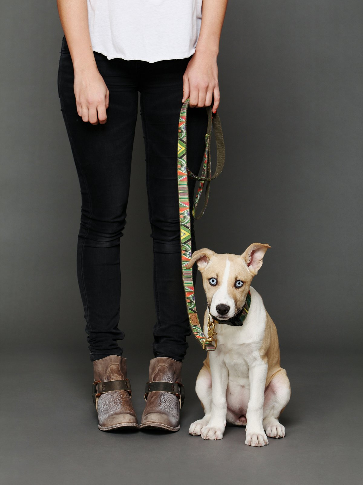 Tulip Field Leash