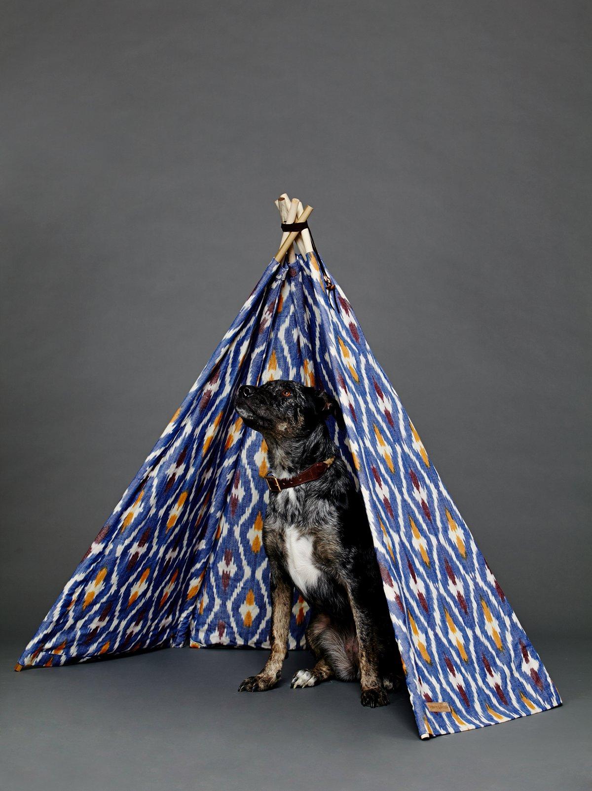 扎染狗用帐篷