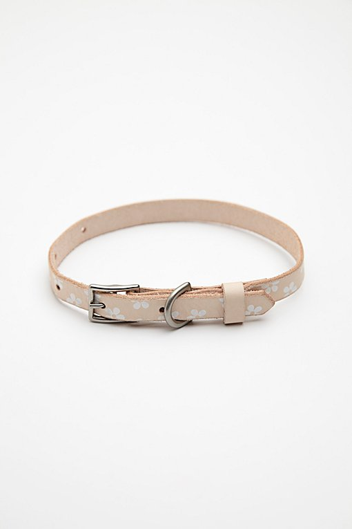 Product Image: Daisy Paint Leather Collar