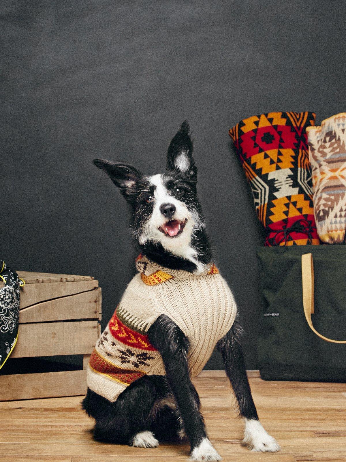 Fairisle Dog Sweater