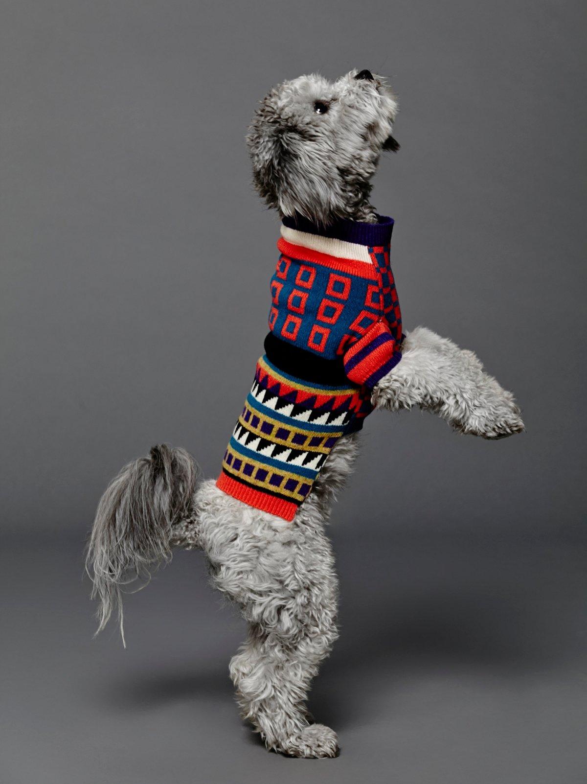 Merino Jacquard Sweater