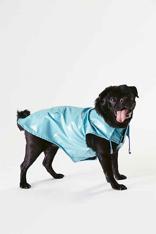 Product Image: Anorak Raincoat