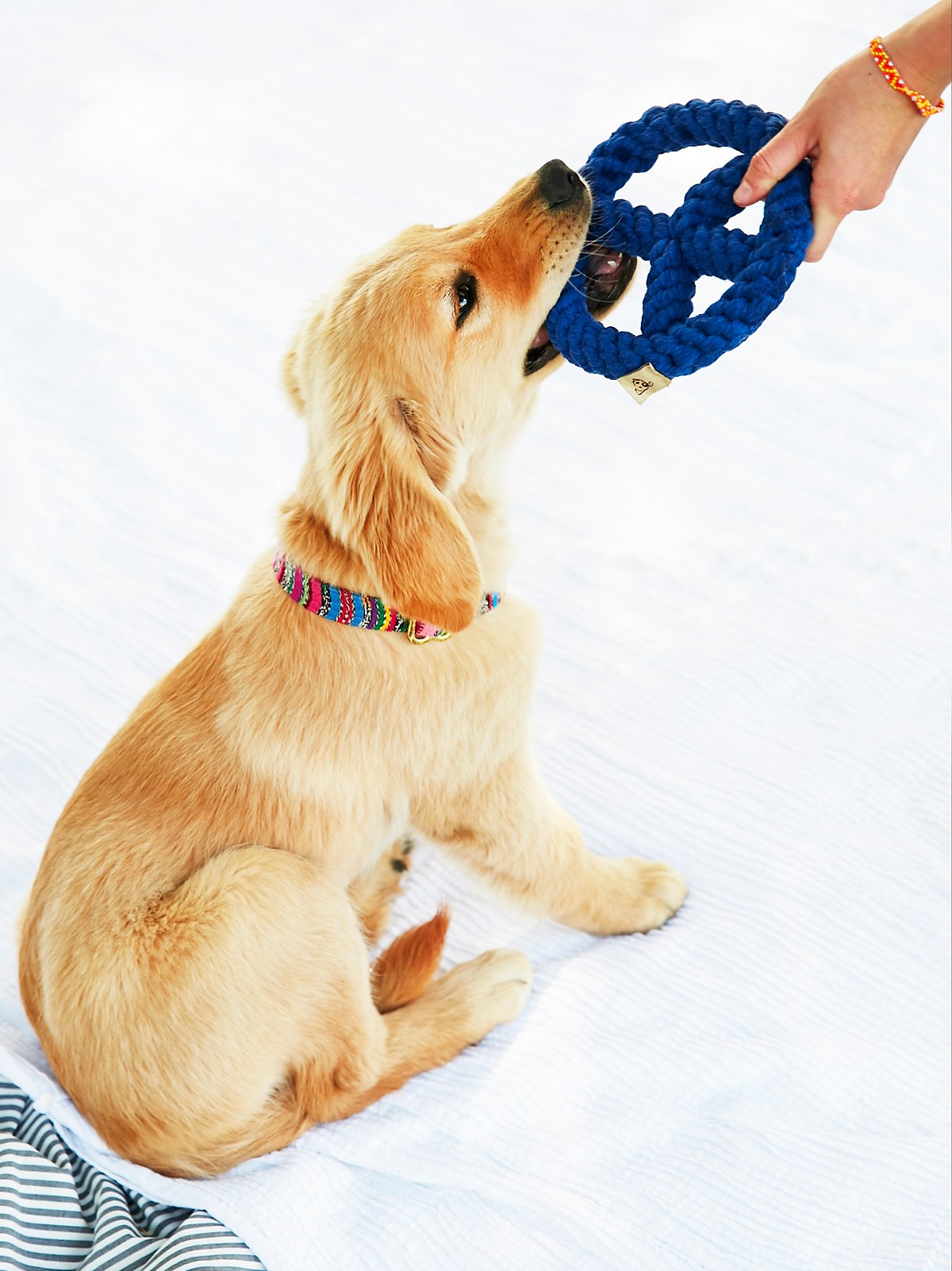 和平标志粗绳狗狗玩具