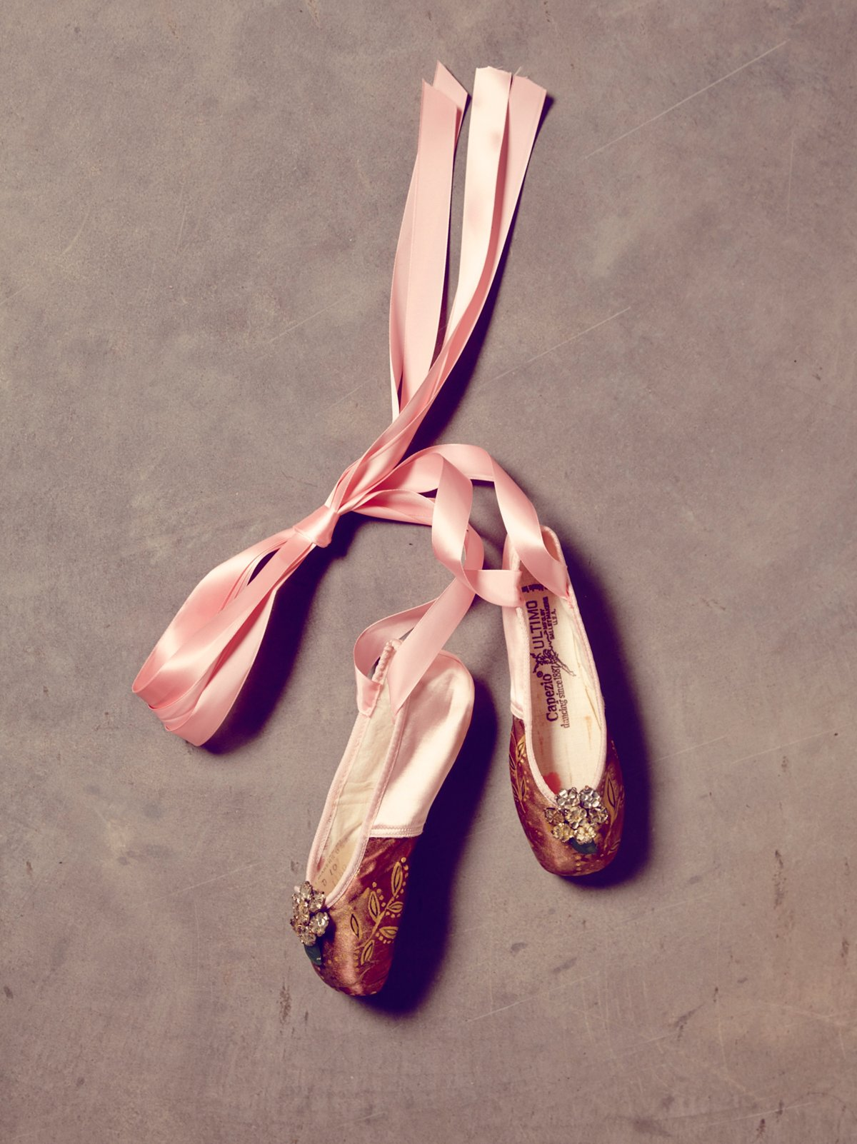Vintage One of a Kind Hand Painted Pointe Shoes