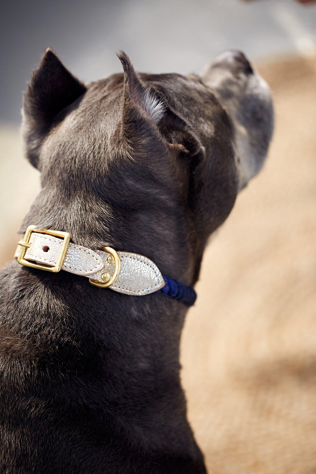Metallic Leather Rope Collar