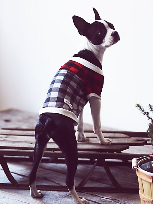 Product Image: Fireside Plaid Doggie Tee