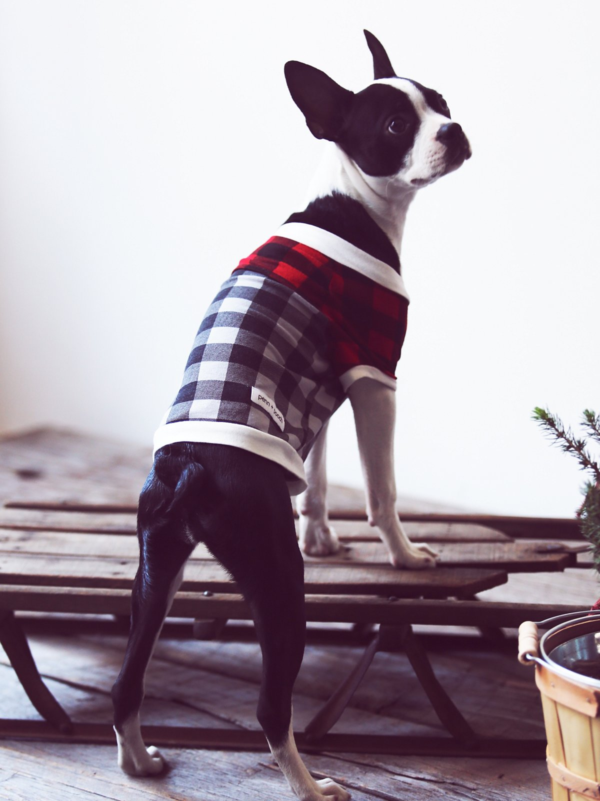 Fireside Plaid Doggie Tee