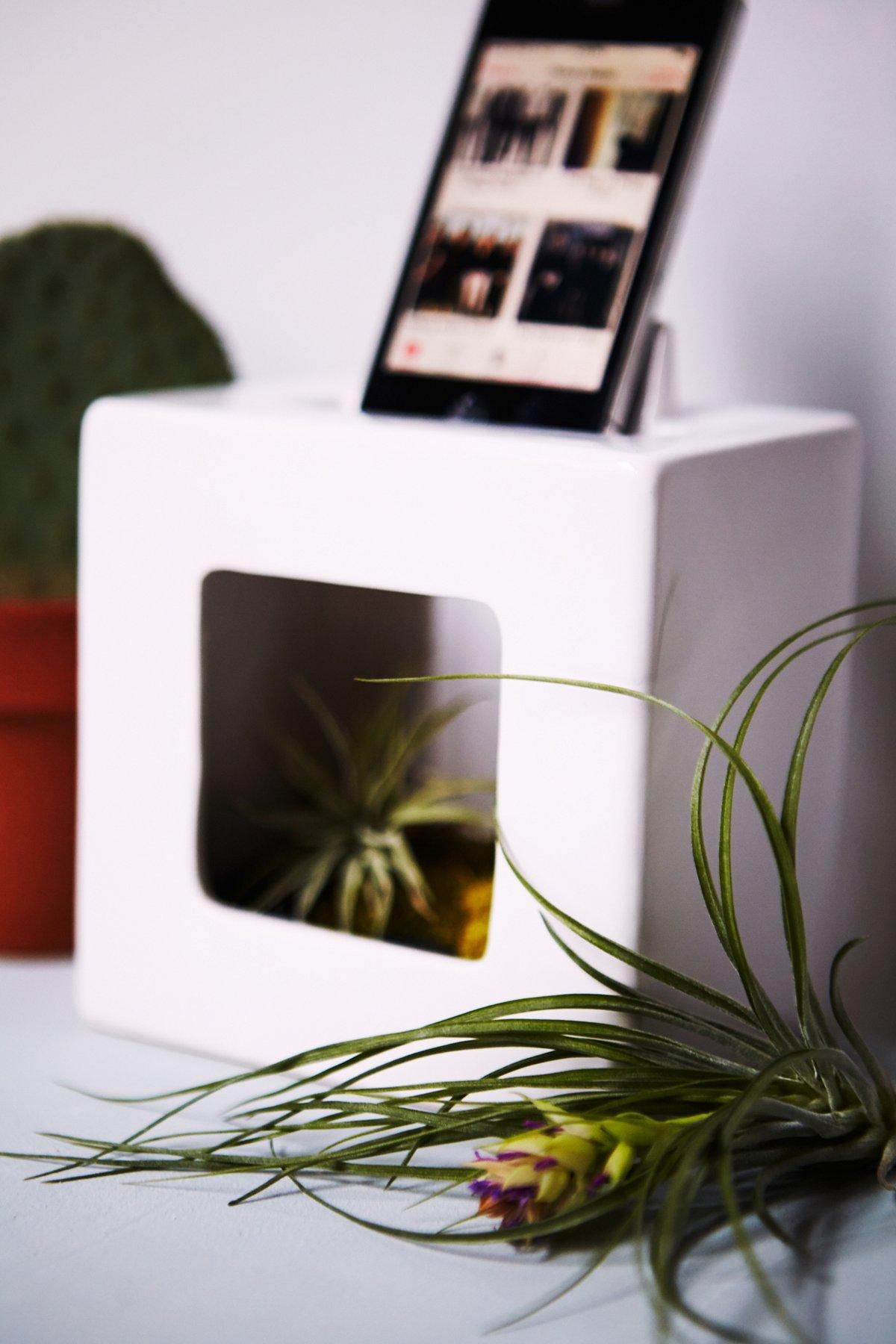 iBloom Phone Amplifier