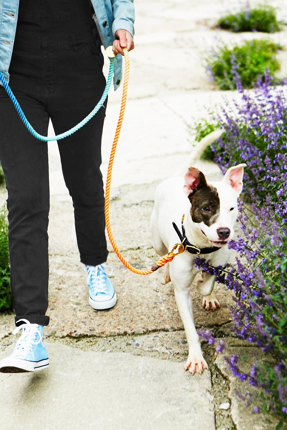 Tie Dye Rope Leash