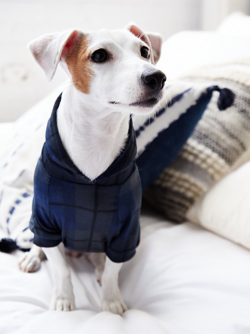 Product Image: Brookfield Plaid Dog Hoodie