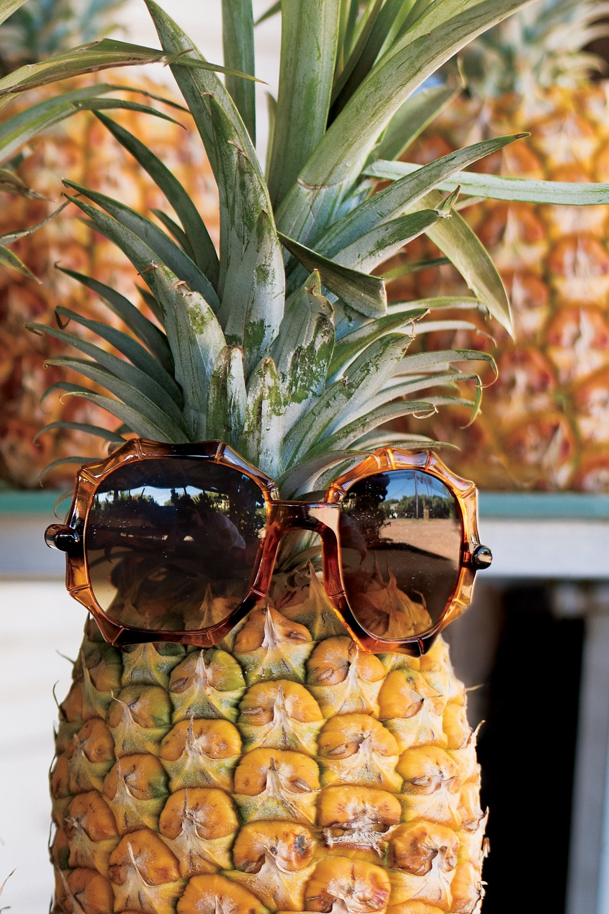Tiki Bar Bamboo Sunglasses