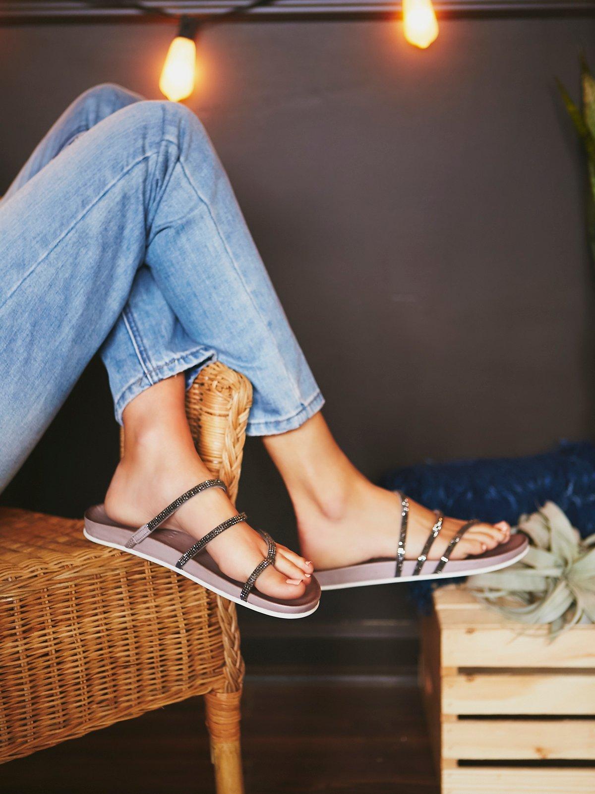 Sprinkles Footbed