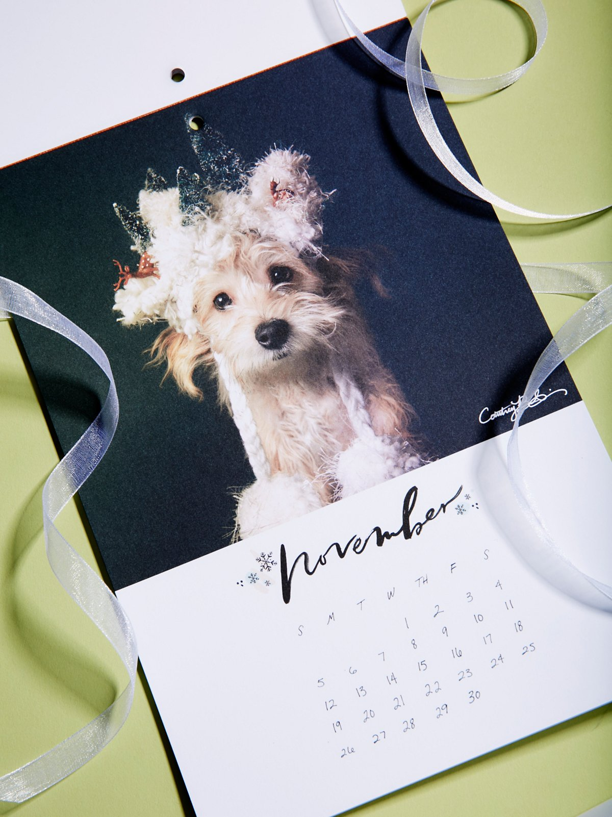 adorable dog calendar