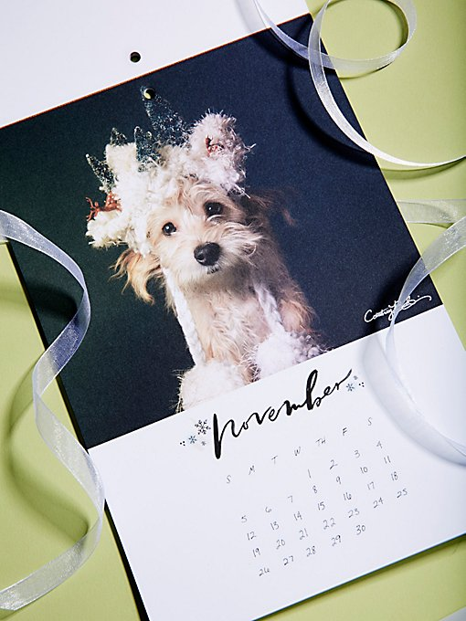Product Image: FP x PAWS 2017 Calendar