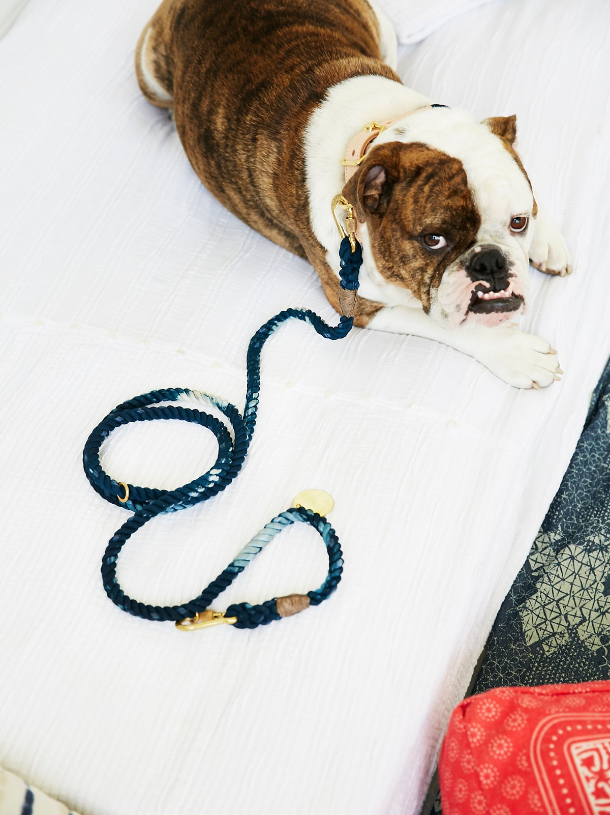 Marble Dog Leash