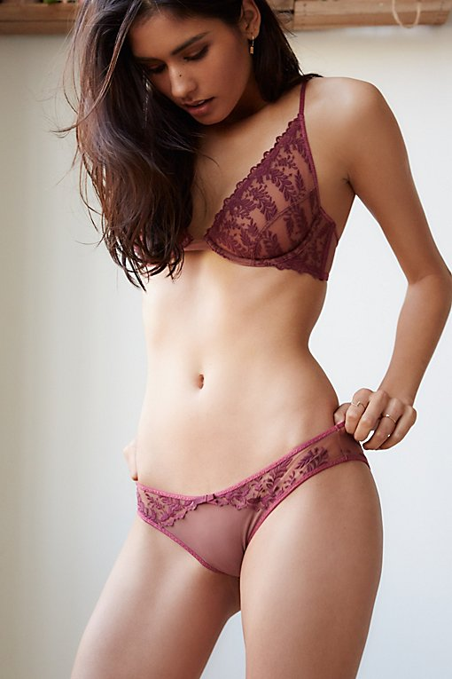 Product Image: Crimson Clover低腰内裤
