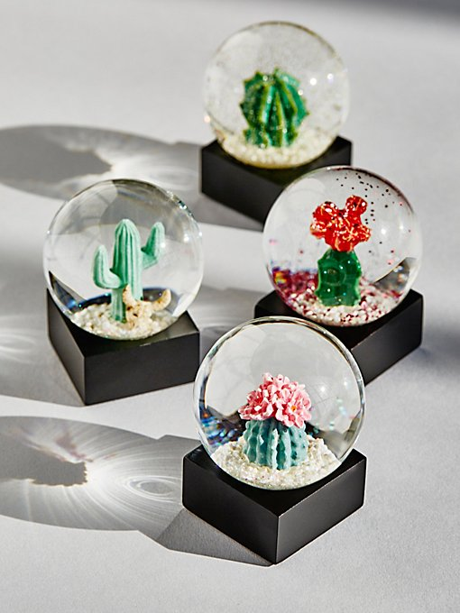 Product Image: Mini Cacti Snow Globe (Set of 4)