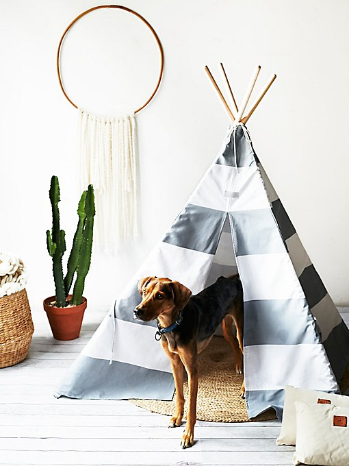 Product Image: Big Dog Teepee