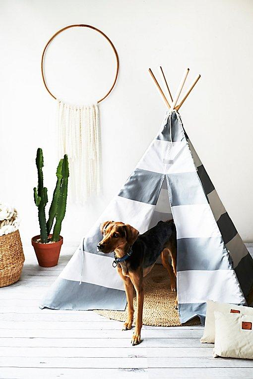 Product Image: Big Dog Teepee