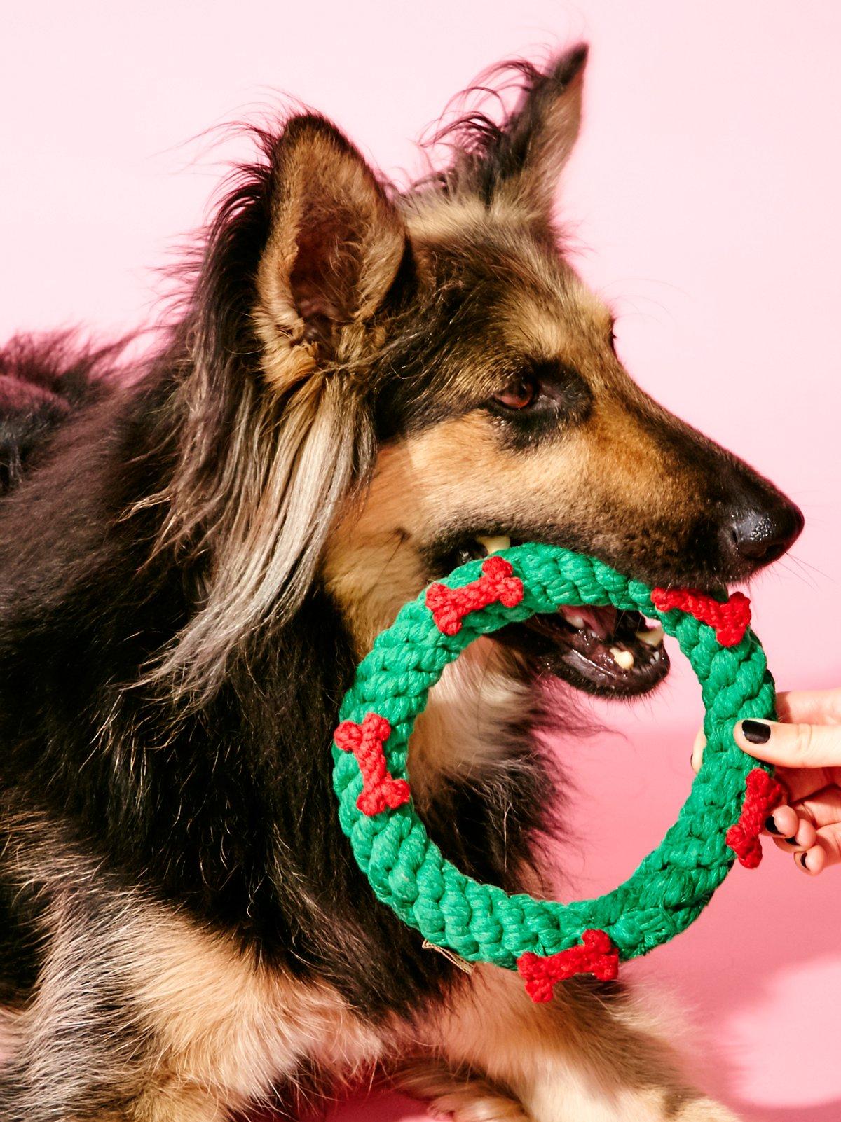 Holiday Wreath Dog Toy
