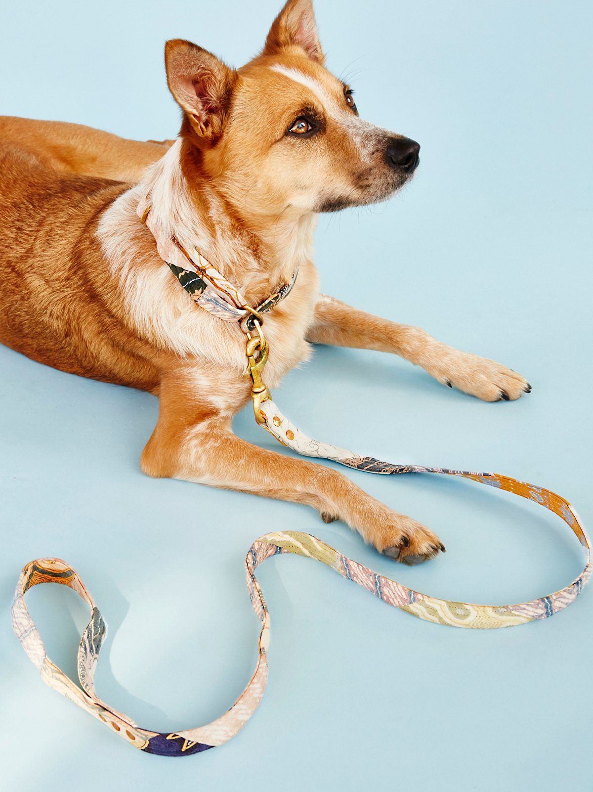 Cocoa Bean Batik Leash