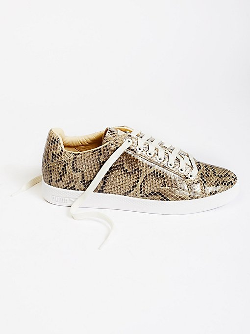 Product Image: Match Animal Court Sneaker