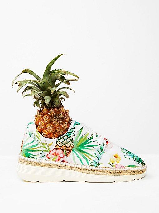 Product Image: Jackson Sneaker