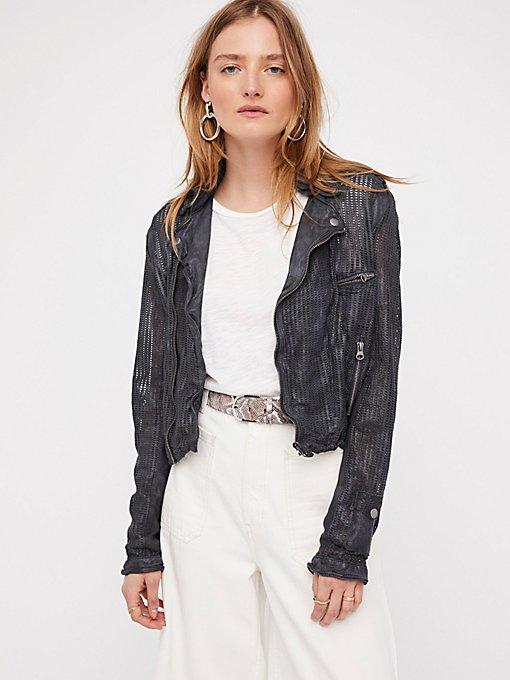 Product Image: Perforated Leather Moto Jacket