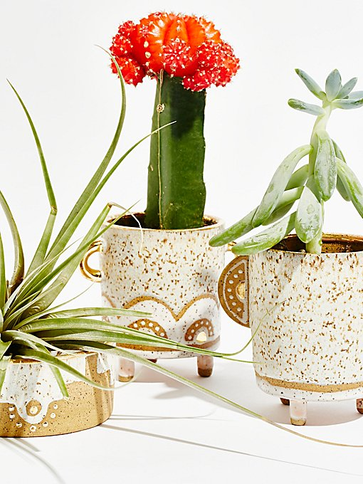Product Image: Trio Planter Set