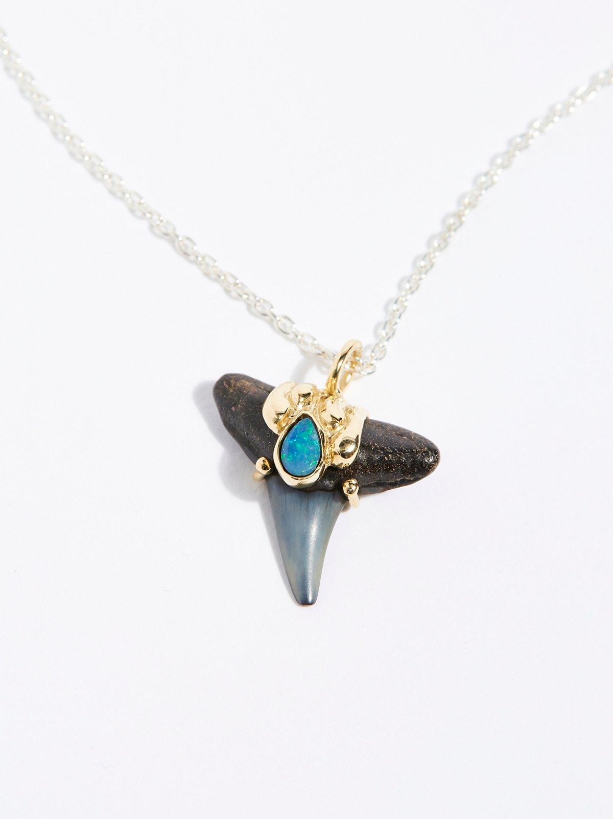 14K鲨鱼牙化石蛋白石项链