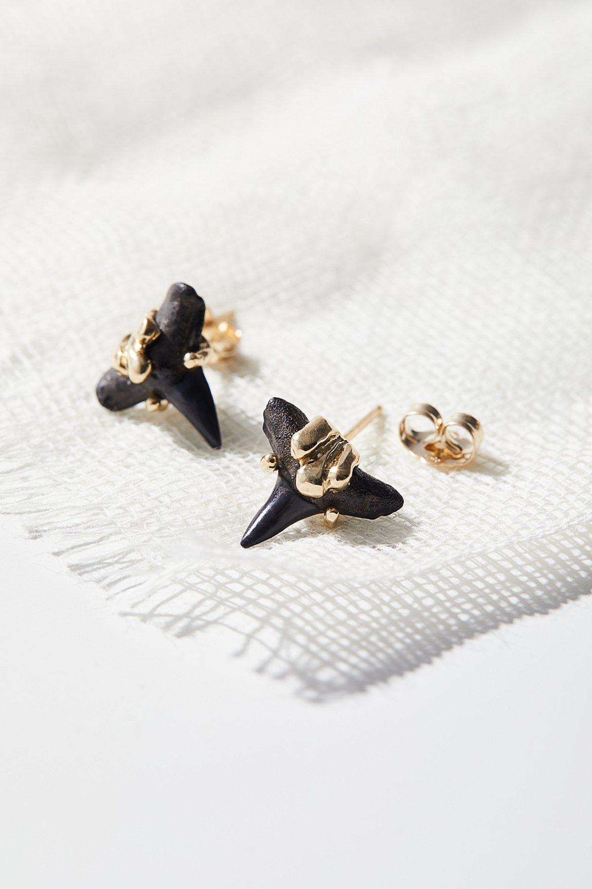 14k Fossilized Shark Tooth Studs