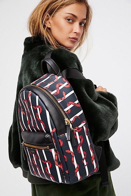 Product Image: Maverick Backpack